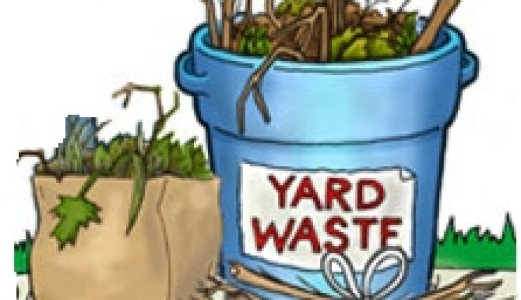 Yard Waste Curbside Collection This Fall